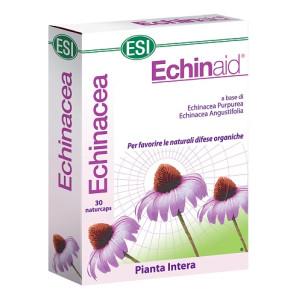 ECHINAID ALTA POTENZA 30CPS