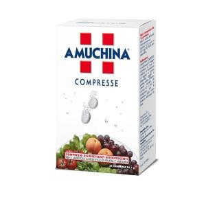 AMUCHINA COMPRESSE 1G 24PZ
